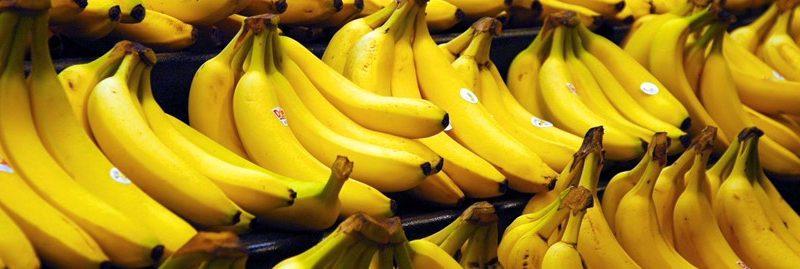 Banana: um ótimo alimento para manter o cérebro ativo