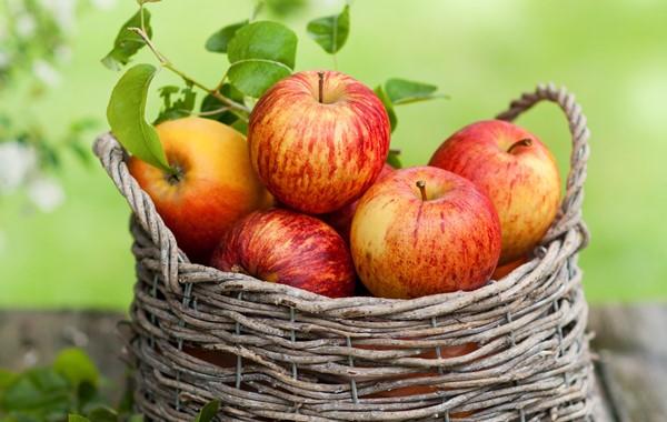 Como emagrecer frutas indicadas e quais devemos evitar-2