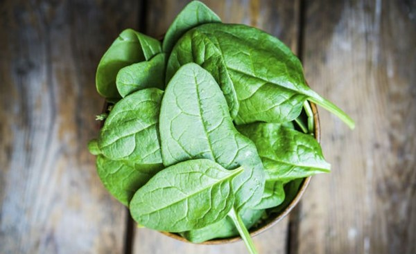 Os incríveis benefícios do espinafre para a saúde-4
