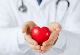 10 benefícios importantes das amoras para a saúde
