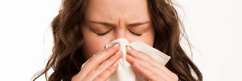 Alimentos que aumentam a imunidade para prevenir o H1N1