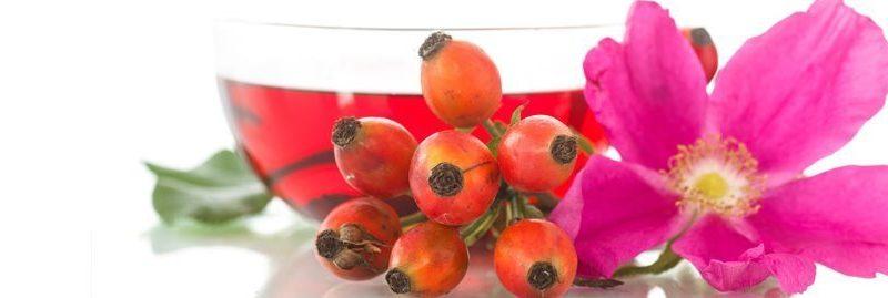 Propriedades e beneficios da rosa mosqueta