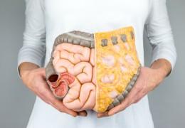 8 remédios naturais para tratar problemas de estômago