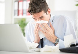 Anti-histaminico: antialérgicos naturais para reduzir alergias