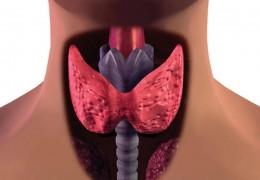 10 sintomas de possíveis problemas na tireoide