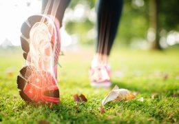 4 nutrientes essenciais para manter ossos e articulações saudáveis