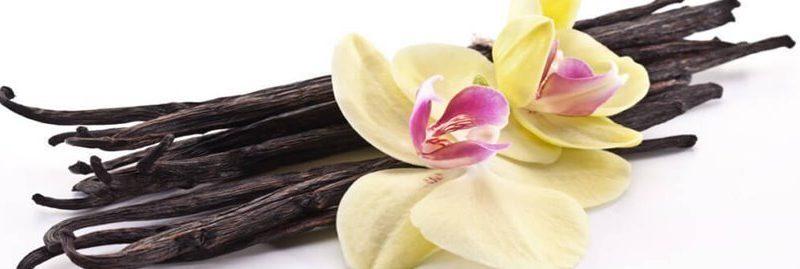 10 extraordinários benefícios da baunilha para a saúde