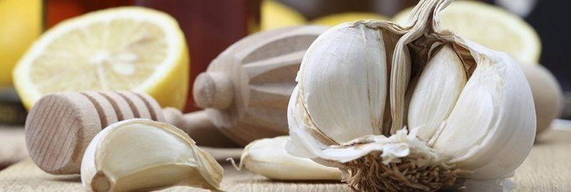 7 surpreendentes antissépticos naturais para curar feridas