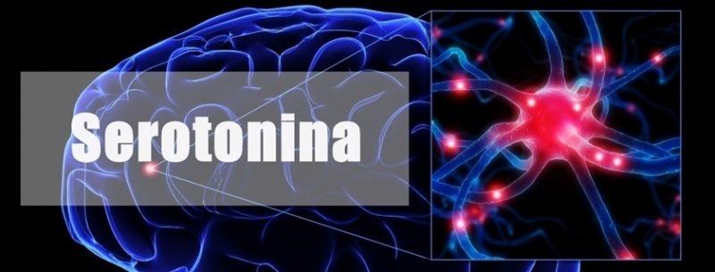 Saiba o que é serotonina e quais suas funções em nosso corpo
