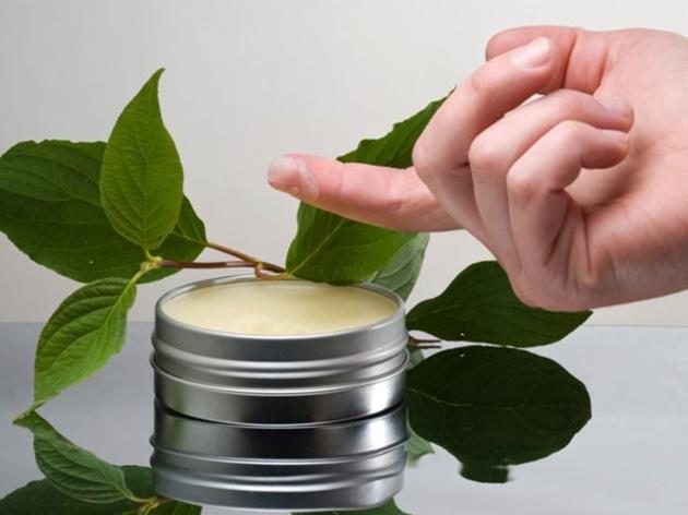 Aprenda como utilizar a c nfora para tratar doen as e - Aromatizantes naturales para la casa ...