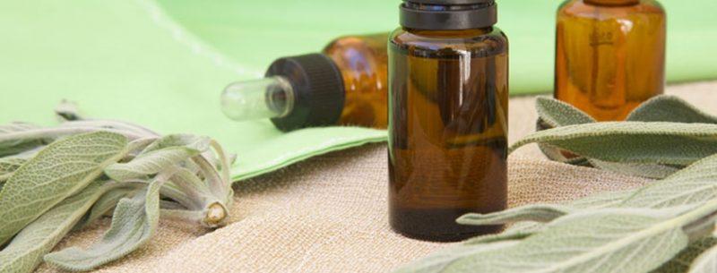 Aprenda como utilizar a cânfora para tratar doenças e manter a casa limpa