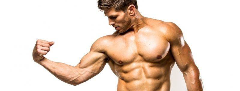 Treino, alimentos e dieta para hipertrofia muscular