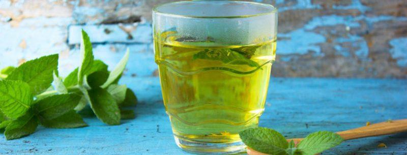 16 ótimos benefícios da erva cidreira para nossa saúde